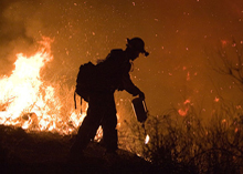 Due to working in harsh and smoky enviornments firefighters become prone to a number of repiratory diseases