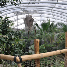 Ian McIntosh, health & safety manager at the Chester Zoo is delighted with the Morley-IAS and Honeywell fire detection system that has been installed