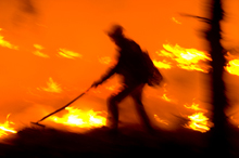 Wildland fires account for some of the biggest losses in fire events in the US