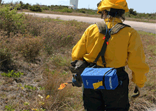 Prescribed fires maintain the balance of the ecosystem