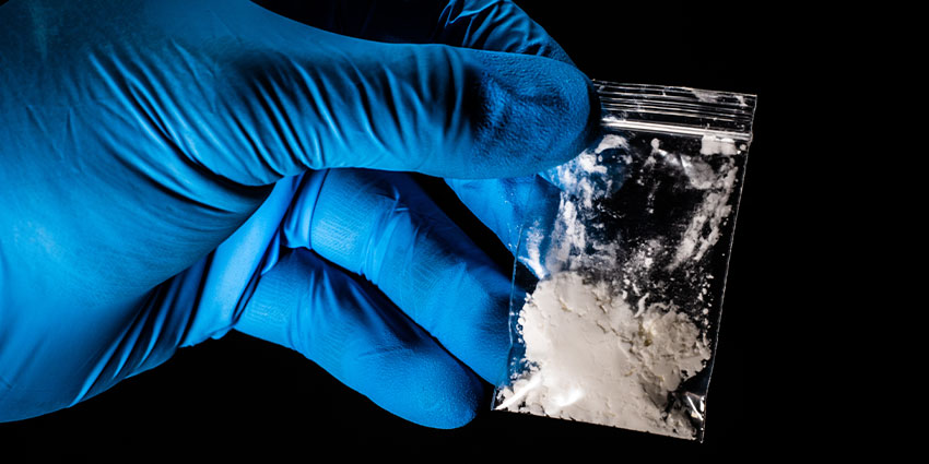 The fentanyl analog carfentanil is reported to be 10,000 times more potent than morphine