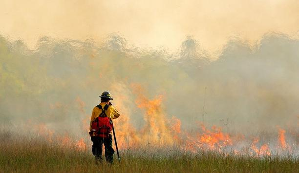 In A Busy Wildfire Season, Researchers Seek New Approaches