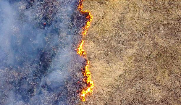 In The Right Conditions, Rapidly Spreading Grass Fires Can Be Deadly