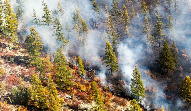 Data Suggests Slower Wildfire Season So Far (Except In The Arctic)