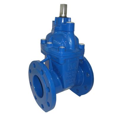 AVK International Type 21/75 wedge gate valve