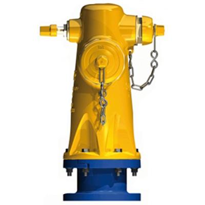 AVK International Type 24/72 350 PSI, threaded nozzle