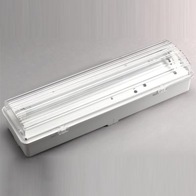 Bardic by Honeywell CA8/NM/3F bulkhead luminaire
