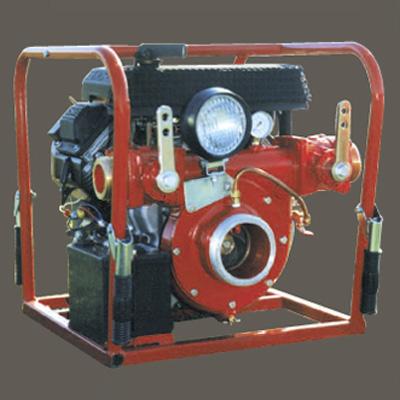 CET PFP-30hpKHL-2D high volume pump