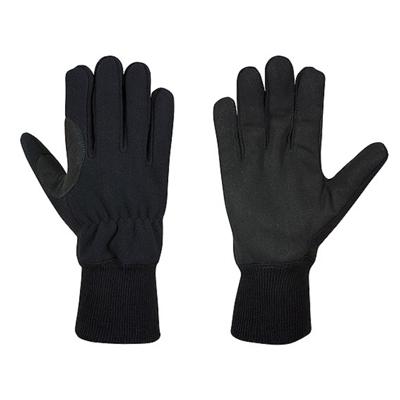 Holik International Daisy gloves