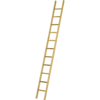 JUST Leitern AG 31-017 wooden rung leaning ladder