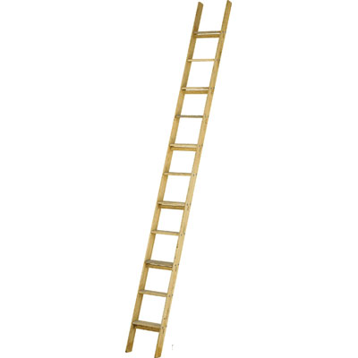 JUST Leitern AG 36-008 wooden stair leaning ladder
