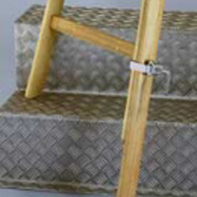 FIS-1021 Universal ladder for daily and professional use