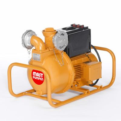 MAST PUMPEN TUP 2 - 1 transfer pump