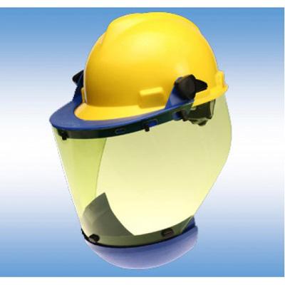 Paulson Manufacturing ARC-S2K1-PC-10 flash protection Arc shield