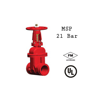Rapidrop 103 GG resilient wedge gate valve