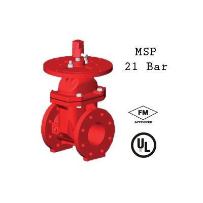 Rapidrop 104 FF gate valve