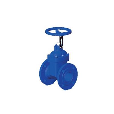 Rapidrop 201F gate valve