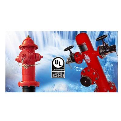 SFFECO 100 SFH-1500 pillar dry type fire hydrant