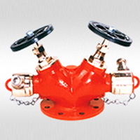 Swati Fire Protection 106 double controlled hydrant valve