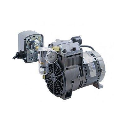 Kussmaul Electronics Co. Inc. 091-9HP Auto Pump HP